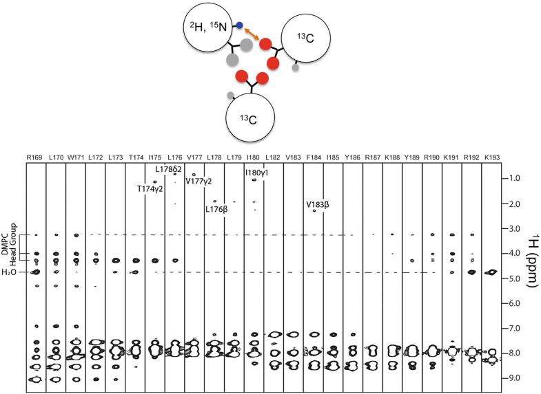 Fig. 6.3b