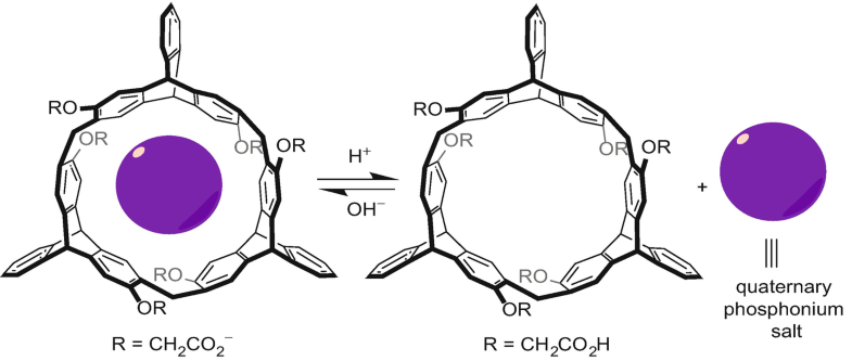 Fig. 30