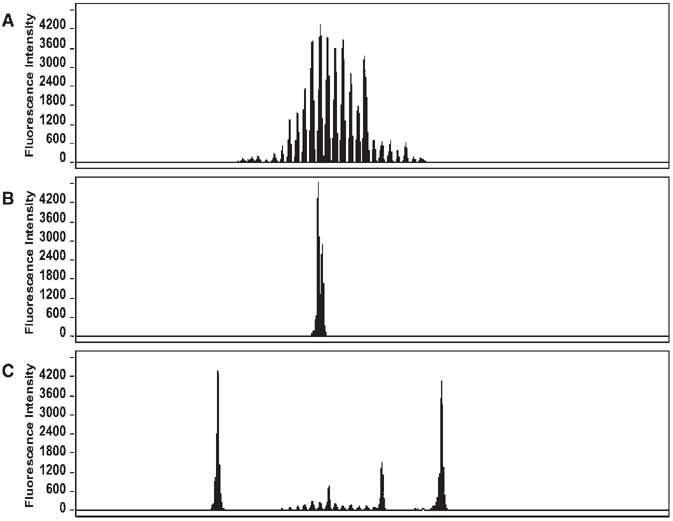 Introduction to capillary electrophoresis of dna springerlink open image in new window fandeluxe Choice Image