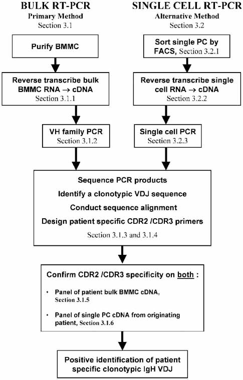Identification of Clonotypic IgH VDJ Sequences in Multiple Myeloma