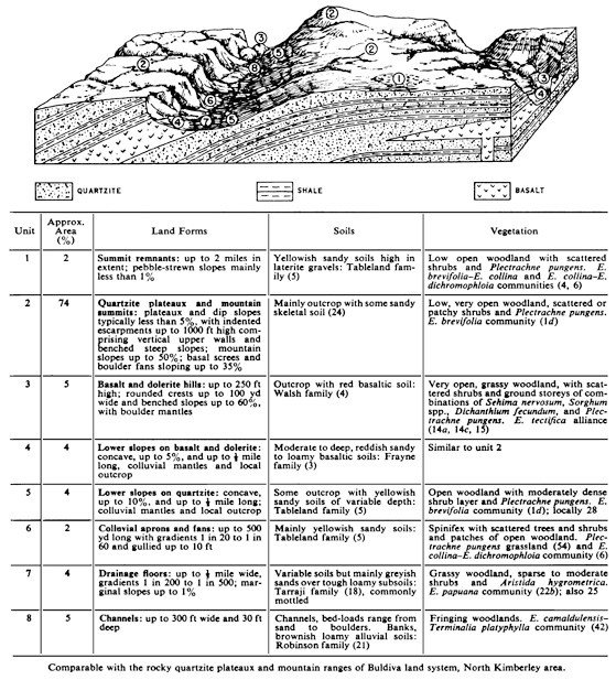 Block diagram | SpringerLinkSpringerLink