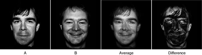 Face Alignment | SpringerLink
