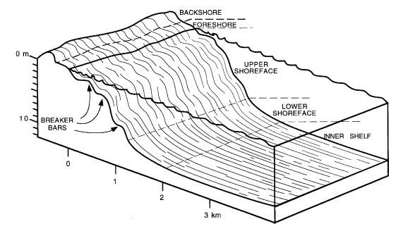 coastal sedimentary facies