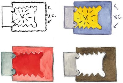 Functionality of Color, Fig. 5