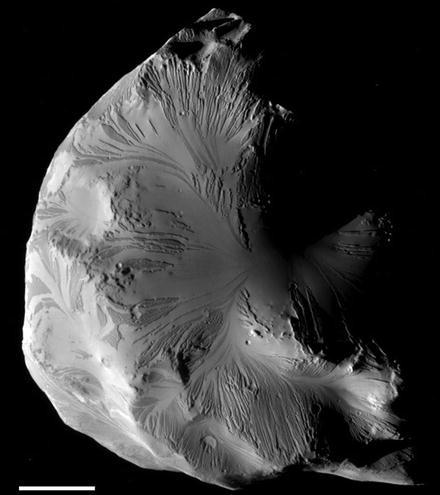 """Drainage Pattern"" (Trojan Satellites of Saturn), Fig. 1"
