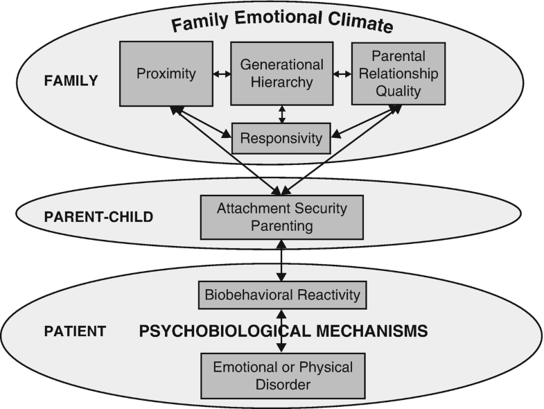 Biobehavioral Family Model, The, Fig. 1
