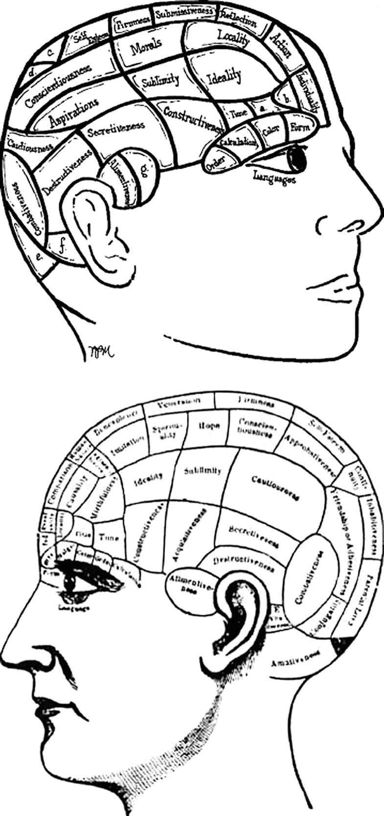 Phrenology, Fig. 1