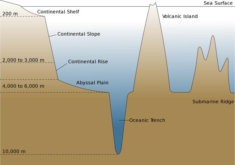 Marine Environments, Fig. 1