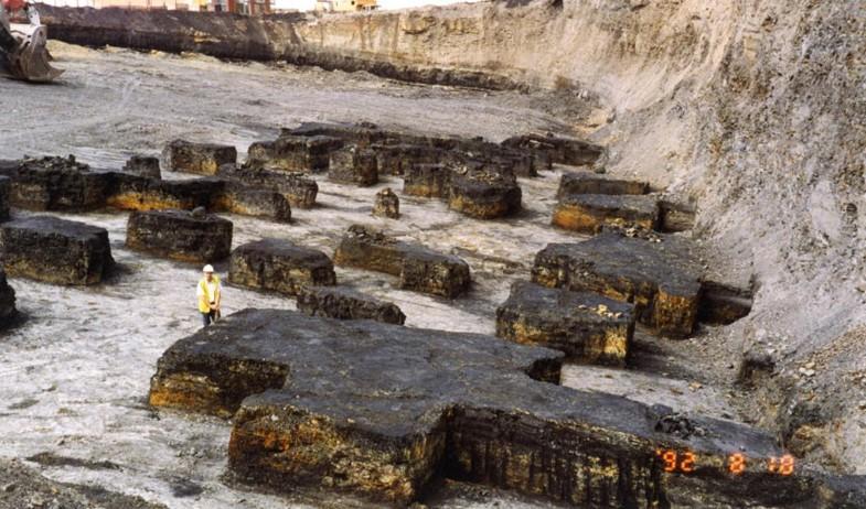 Coal, Fig. 1