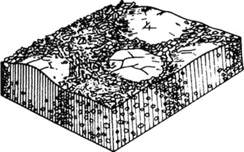 Fig. 44