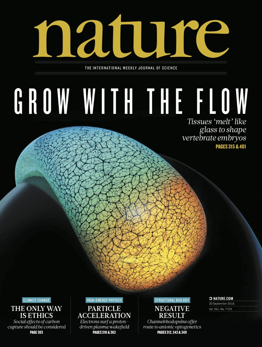 Research, news and analysis from this week's edition of the world's leading science journal.