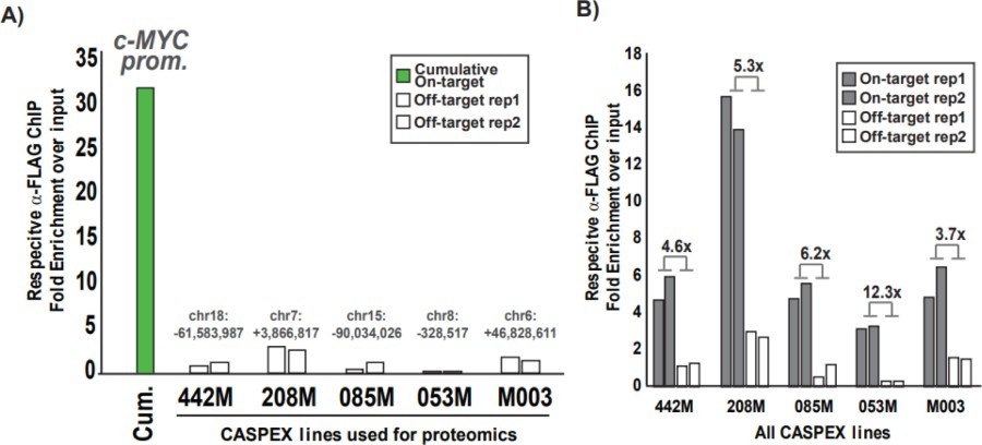 Supplementary Figure 9 On And Off Target Caspex Binding Analysis