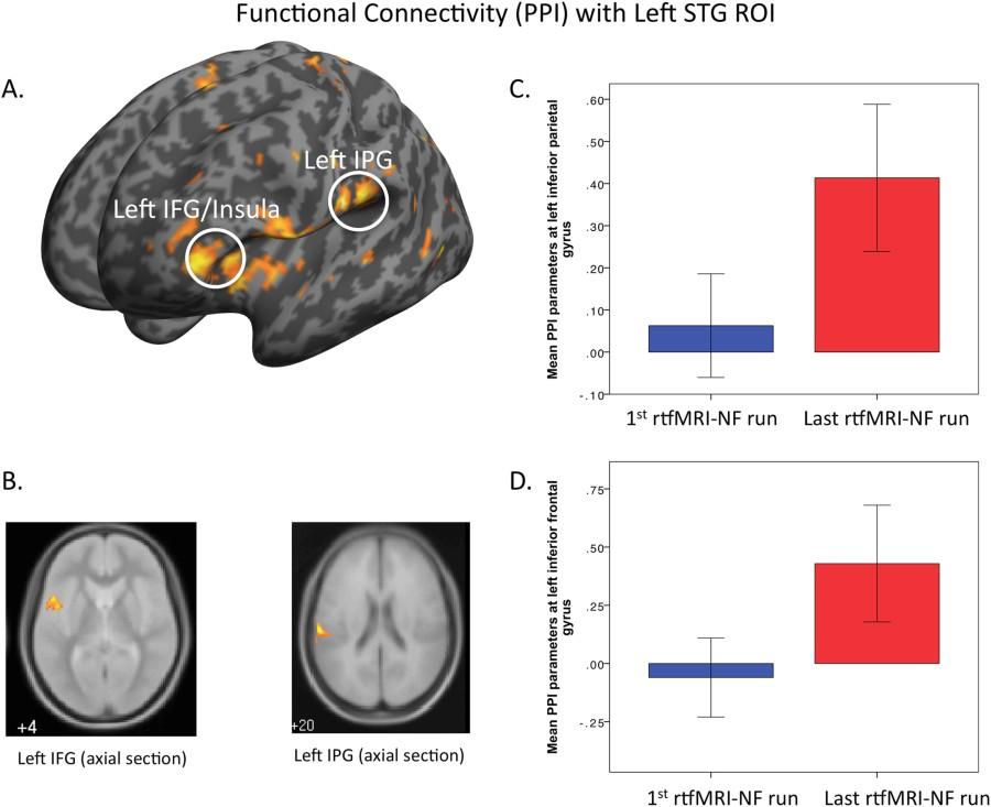 Fig 3 Translational Psychiatry