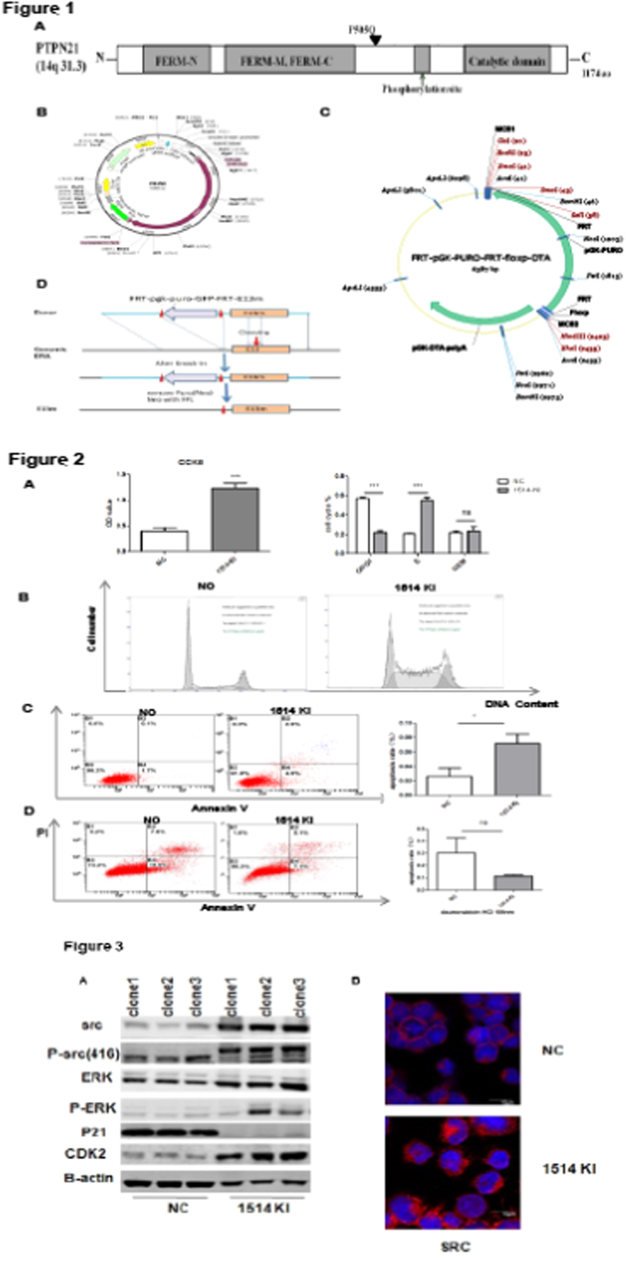 The 44 Th Annual Meeting Of European Society For Blood And Page Titlefigure 74schematic Diagram A Carbon Microphone P059 Figure Detection Biological Activity In Nalm6 Cell Line With Ptpn21 Mutation