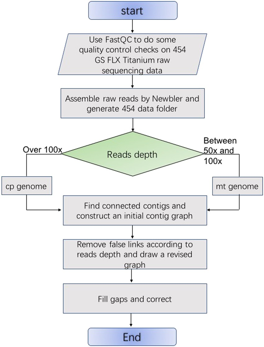 Fig 2 The Flow Chart Of A Novel Method For Organellar Genome