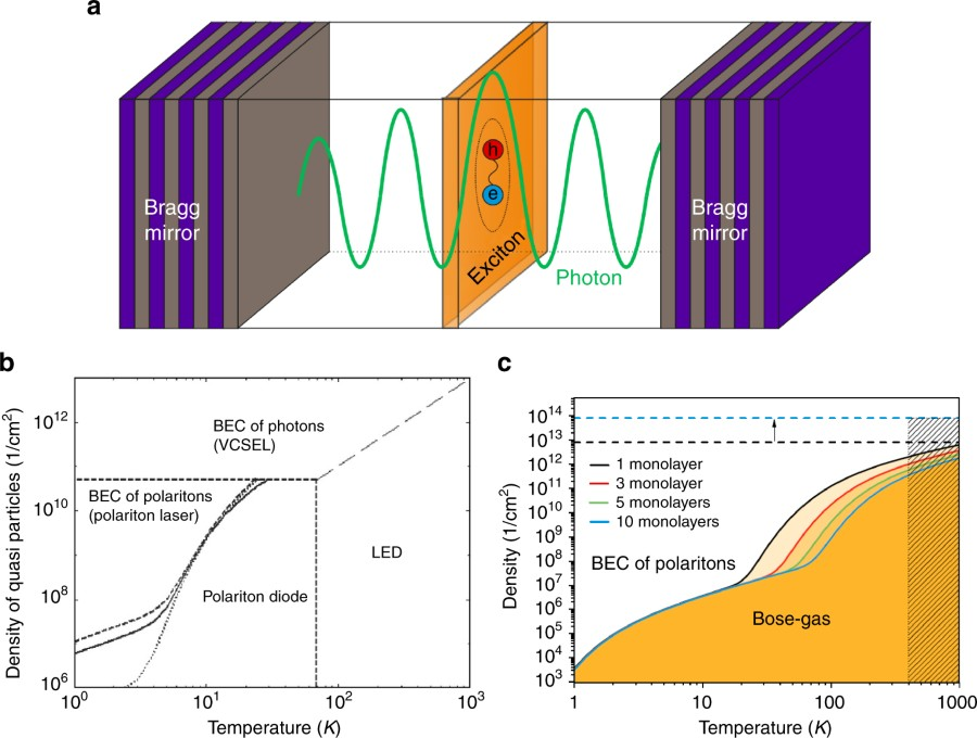 Two-dimensional semiconductors in the regime of strong light