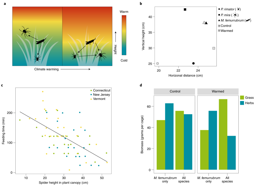 Food web rewiring in a changing world | Nature Ecology & Evolution  Switch Wiring Diagram on