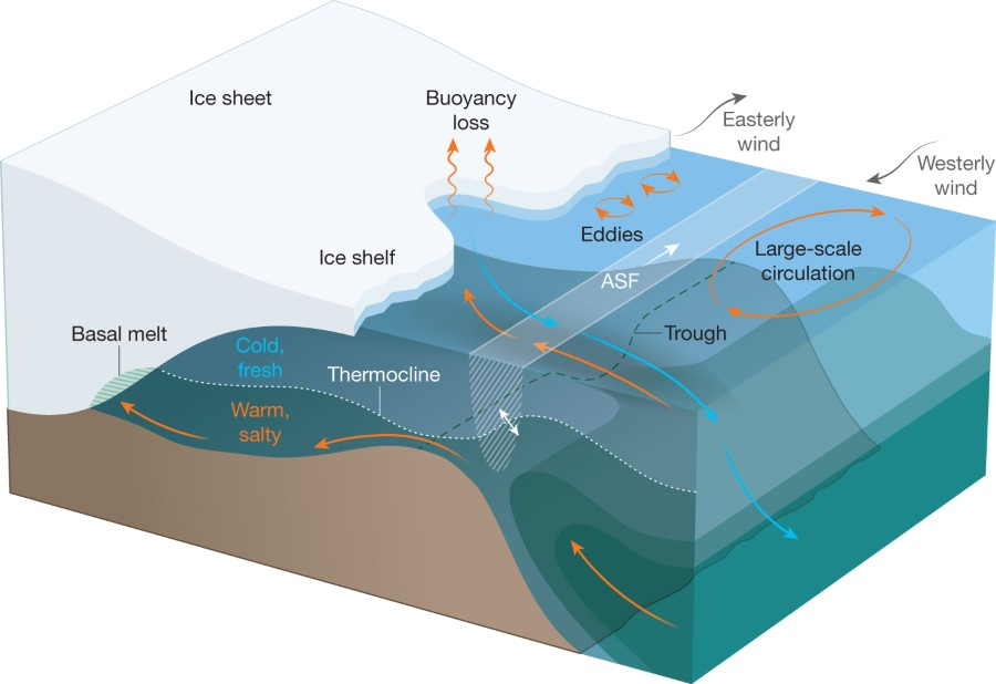 Fig 4 Processes That Control Ocean Heat Flux To The Antarctic