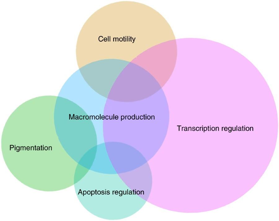 Fig 2 Nature Genetics