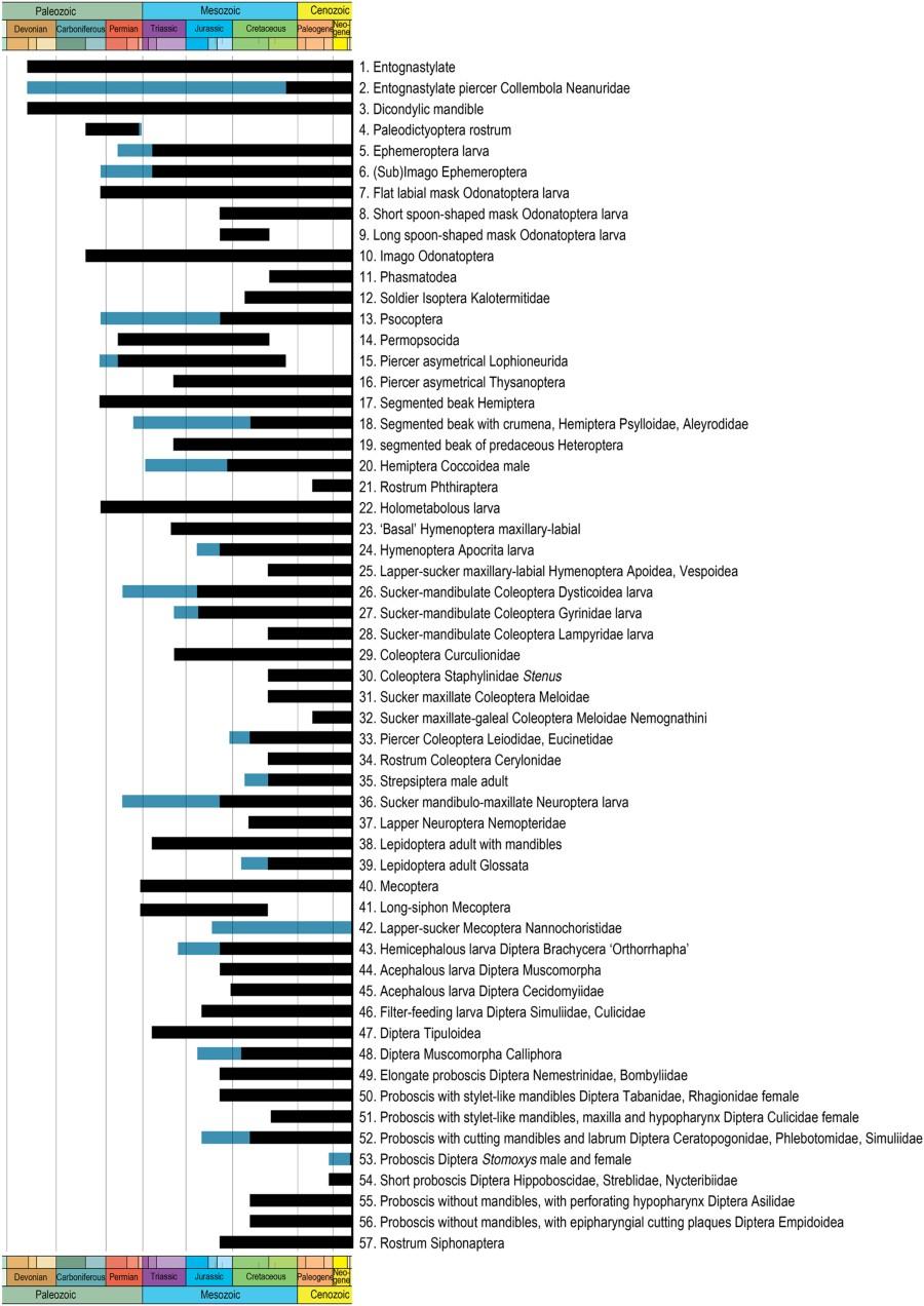 Paleontología y Evolución en la UCM