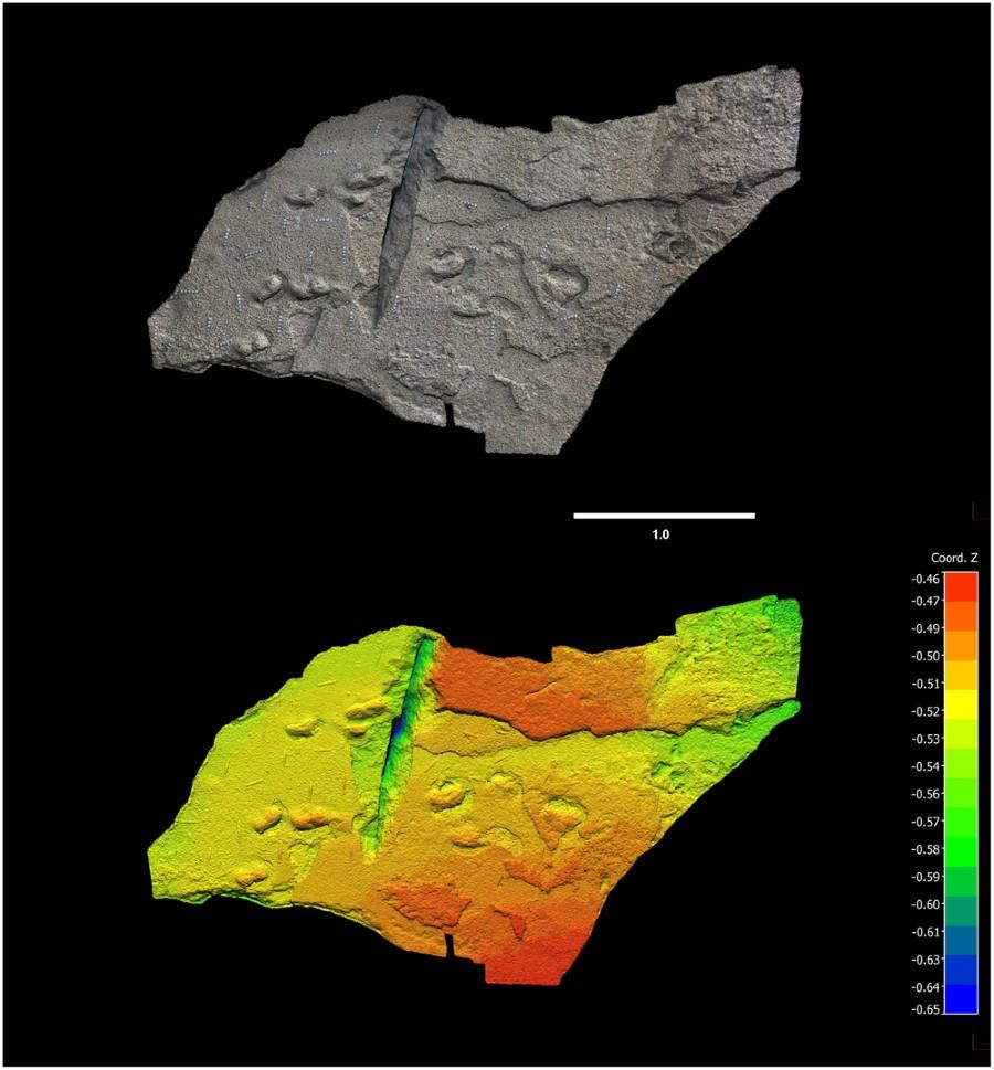 Fotogrametría de las huellas de homininos, superficie sur. Costa de Cape South, Sudáfrica.