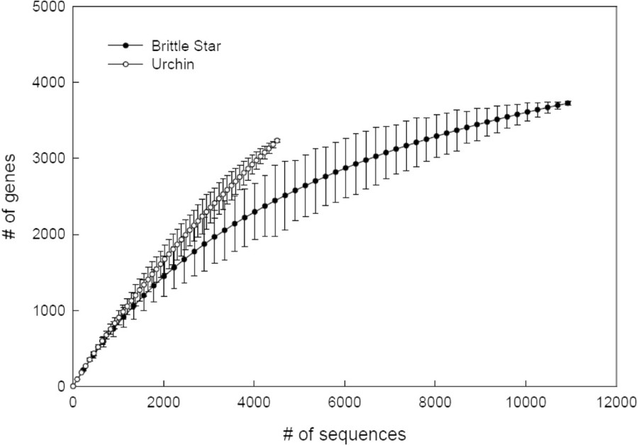Sequencing and analysis of the gastrula transcriptome of the brittle