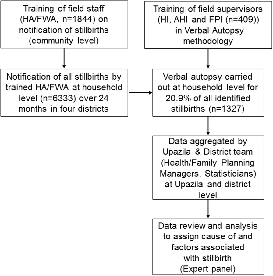 Stillbirth surveillance and review in rural districts in