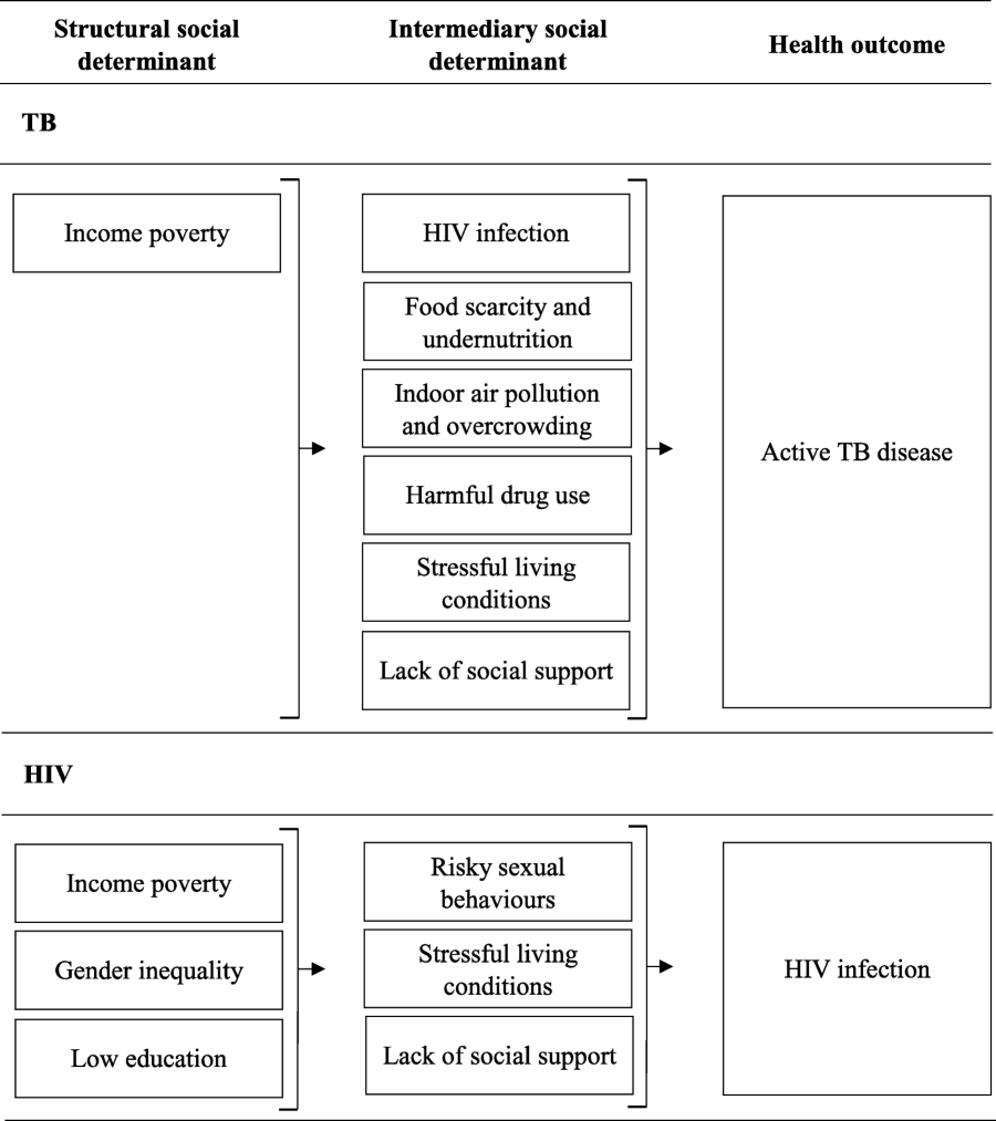 Cash transfers to enhance TB control: lessons from the HIV