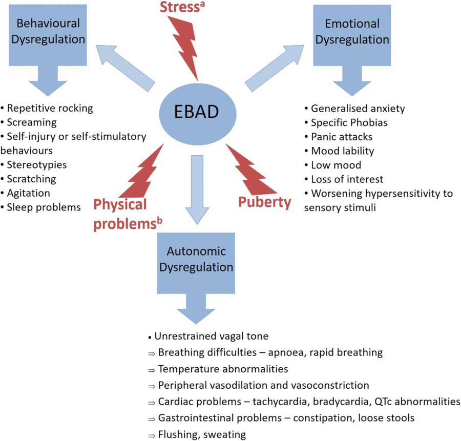 Key issues in Rett syndrome: emotional, behavioural and
