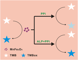 Pyrophosphate-Mediated On-Off-On Oxidase-Like Activity