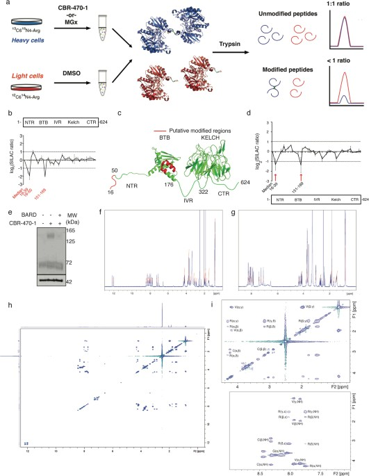 A metabolite-derived protein modification integrates glycolysis with ...