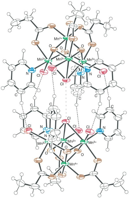 Exchange Biased Quantum Tunnelling In A Supramolecular Dimer Of
