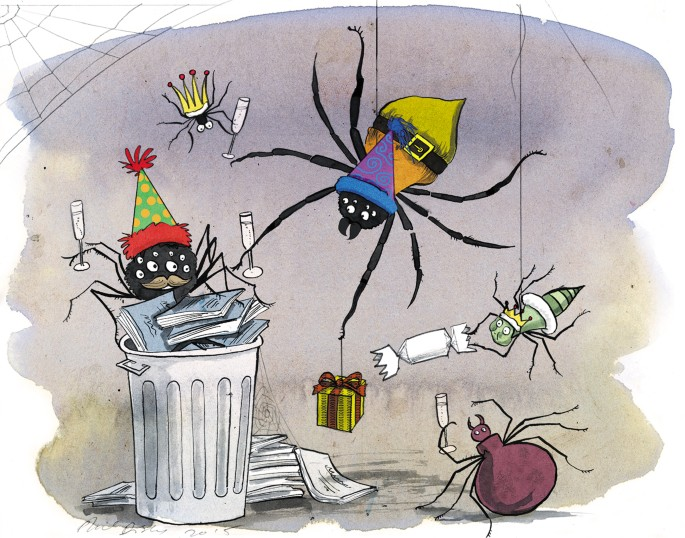 Spider taxonomists catch data on web - Nature