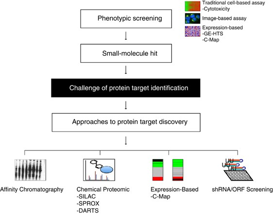genetic cancer drug targets