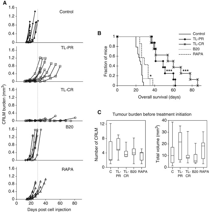 Improved Efficacy Of A Novel Anti Angiogenic Drug Combination Tl 118 Against Colorectal Cancer Liver Metastases Mri Monitoring In Mice British Journal Of Cancer