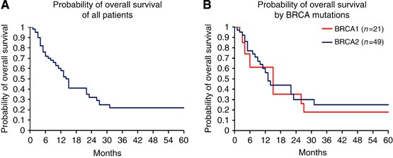 Overall Survival And Clinical Characteristics Of Pancreatic Cancer In Brca Mutation Carriers British Journal Of Cancer