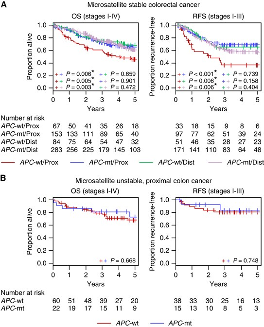 Wild Type Apc Predicts Poor Prognosis In Microsatellite Stable Proximal Colon Cancer British Journal Of Cancer