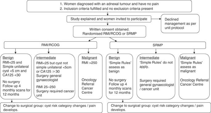 endometrial cancer rcog guidelines urina din negii genitali