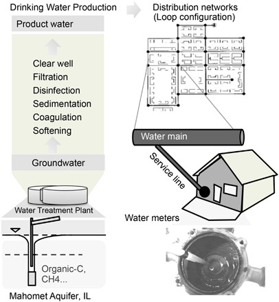 Core Satellite Populations And Seasonality Of Water Meter Biofilms In A Metropolitan Drinking Water Distribution System The Isme Journal