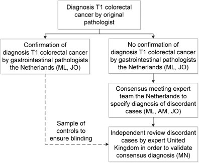 Diagnosis Of T1 Colorectal Cancer In Pedunculated Polyps In Daily Clinical Practice A Multicenter Study Modern Pathology