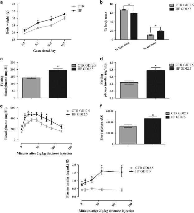 Disrupted Immunity In Fetal Brain Is >> Gestational Diabetes Exacerbates Maternal Immune Activation