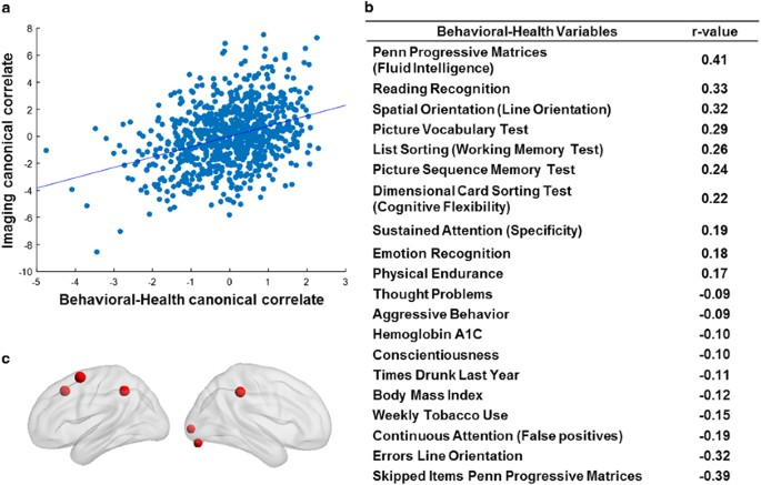 An Integrated Brain Behavior Model For Working Memory Molecular