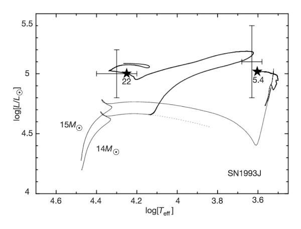 the massive binary companion star to the progenitor of