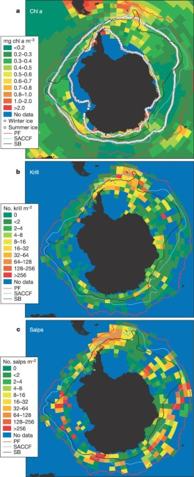 Long-term decline in krill stock and increase in salps within the Southern Ocean