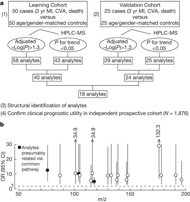Gut flora metabolism of phosphatidylcholine promotes