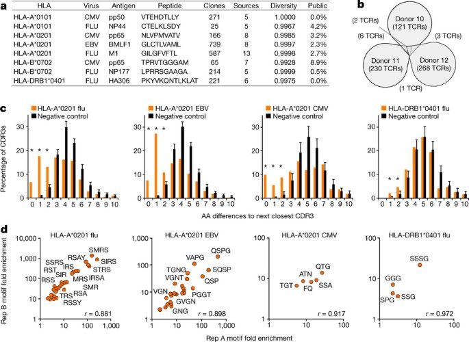 Identifying specificity groups in the T cell receptor repertoire