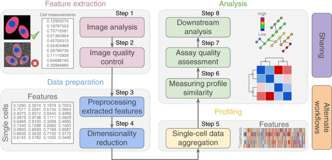 Data Analysis Strategies For Image Based Cell Profiling Nature Methods