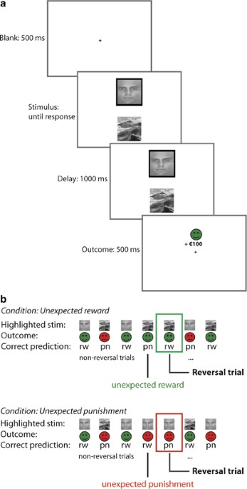 Working Memory Capacity Predicts Effects Of Methylphenidate On Reversal Learning Neuropsychopharmacology
