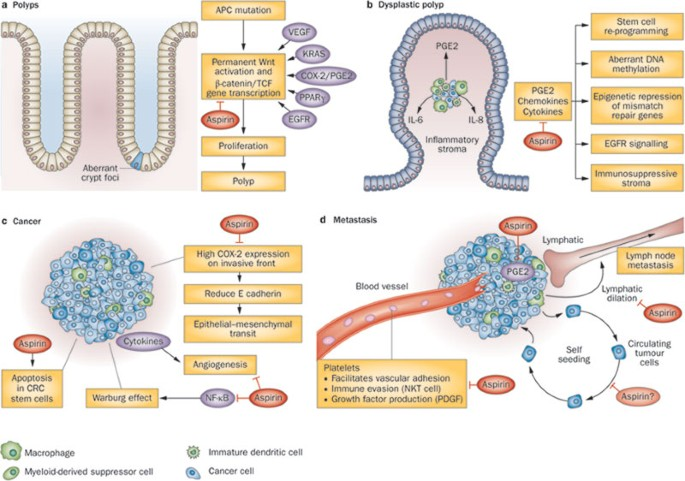 colorectal cancer aspirin