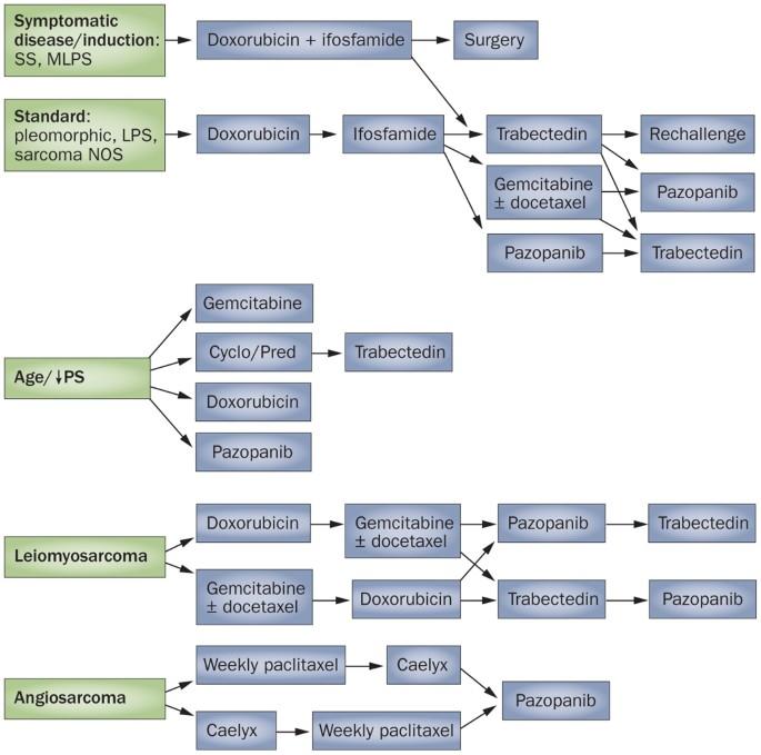 Cancer council professional development - Cancer council professional development